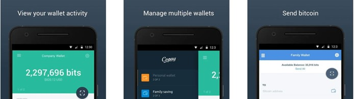 Copay - Are Multi-sig Wallets Truly Safe?